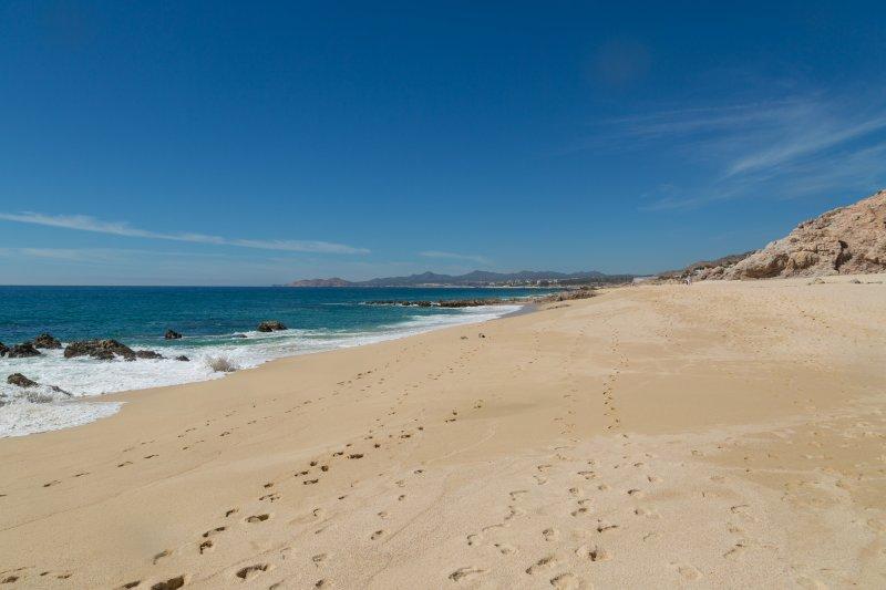 20180212_Los Cabos_7622.jpg