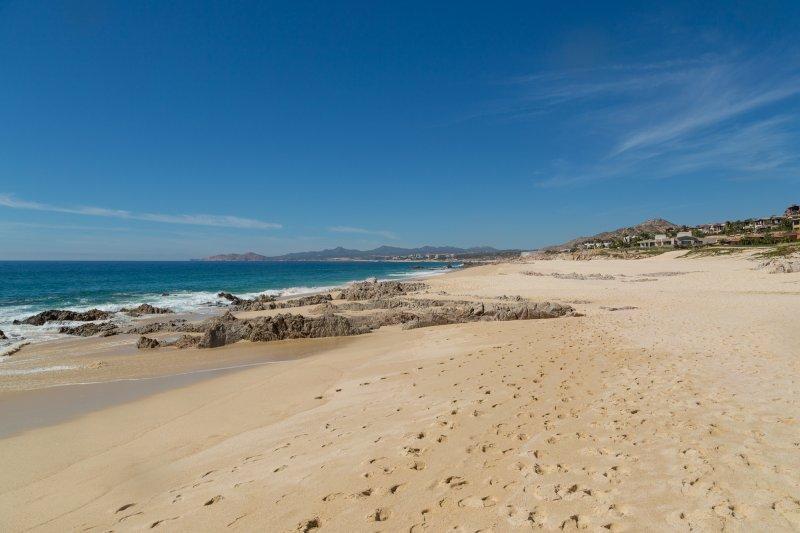 20180212_Los Cabos_7654.jpg