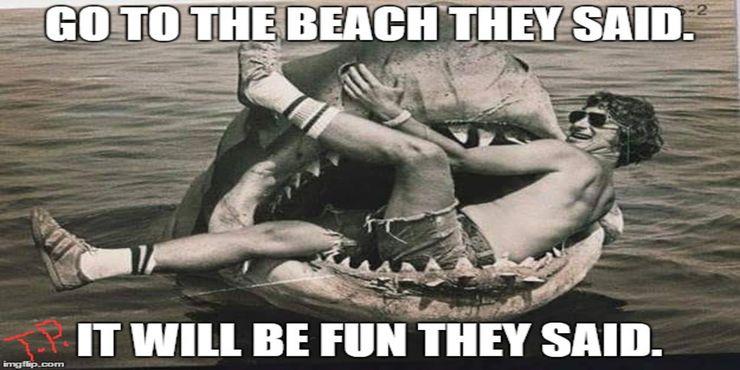 5-Jaws-Meme-Go-To-The-Beach-They-Said.jpg